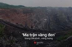 [Mega Story] 'Ma trận vàng đen' trong cơn khát năng lượng