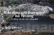 Bài 8: Dòng suối than quanh Bái Tử Long: Vị đắng từ các mỏ 'vàng đen'