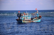 Bài 5: 'Chở' Luật… ra khơi, giúp ngư dân vững tin bám biển