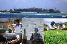 [Photo] Sự sống bất diệt nơi biển đảo thiêng liêng của Tổ quốc