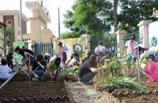 Hà Nội: Khởi động trồng vườn thảo dược bảo vệ gấu tại trường tiểu học