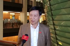 Trả lời chất vấn: Bộ trưởng Công thương ''đi thẳng vào vấn đề nóng'