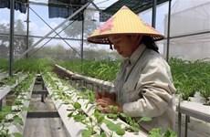 Đề xuất bộ tiêu chí môi trường trong xây dựng nông thôn mới sau 2020
