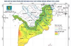 Vựa lúa số 1 Việt Nam: Xâm nhập mặn còn tăng từ các đợt triều cường