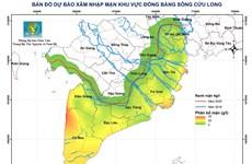 Vựa lúa số 1 Việt Nam: Xâm nhập mặn có thể tăng trong tuần tới