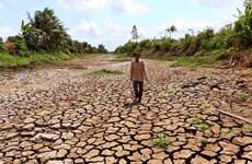 Hạn hán, thiếu nước có khả năng lan rộng tại miền Trung và Tây Nguyên