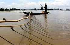 Mực nước về Đồng bằng sông Cửu Long thấp nhất trong vòng 10 năm