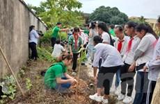 Hà Nội sẽ có thêm 4.000 cây xanh để giảm thiểu ô nhiễm không khí