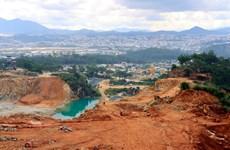 Xử lý tình trạng ô nhiễm môi trường 'phá vỡ' cảnh quan rừng ở Đà Lạt