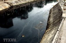 Kênh Bắc Hưng Hải ô nhiễm: Cử tri yêu cầu làm rõ vai trò địa phương