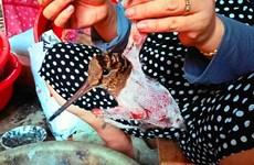 Nghiêm cấm buôn bán động vật hoang dã trong dịp nghỉ Tết Nguyên đán
