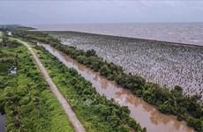 Quy hoạch mới Đồng bằng sông Cửu Long: Cần tạo đòn bẩy về nguồn lực