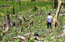 Bộ TN-MT phấn đấu hoàn thành sửa đổi Luật Đất đai trong năm 2022