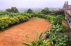 Bộ TN-MT kiểm tra trách nhiệm quản lý đất đai tại 26 tỉnh, thành phố