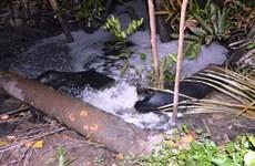 Phải vận hành 100% hệ thống xử lý nước thải ở các khu công nghiệp