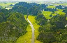 Tháng hành động vì môi trường: Chung tay hướng tới 'tương lai xanh'