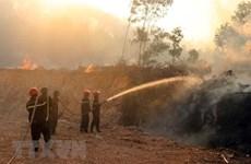 Thủ tướng Chính phủ yêu cầu cấp bách phòng cháy, chữa cháy rừng