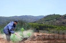 Xây dựng nông thôn mới: Cần cân đối ngân sách khi nguồn lực phân tán