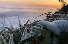 Mùa Đông năm nay lạnh hơn năm ngoái, rét đậm có thể xuất hiện sớm