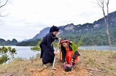 Hà Giang: Trồng mới 1 triệu cây xanh khôi phục rừng đầu nguồn