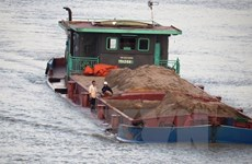 Đa số lái tàu ở Đồng bằng sông Cửu Long không có chứng chỉ hành nghề