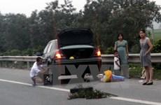 Điều tra, xử lý nghiêm đối tượng cố tình rải đinh trên Quốc lộ 37