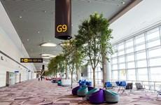 Vietnam Airlines sắp khai thác nhà ga hiện đại nhất đảo quốc Singapore