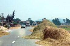 Xử lý nghiêm vi phạm dùng lòng đường trái phép để phơi nông sản