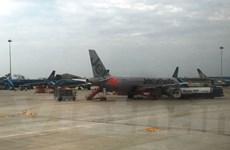 Vietnam Airlines, Jetstar vận chuyển đào, mai dịp Tết Nguyên Đán
