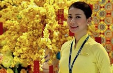 Tiếp viên Vietnam Airlines trả lại 13.000 USD khách quên trên máy bay