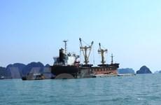 Vận tải sông pha biển: 'Đứa con lai' với tấm 'lệnh bài' đa năng