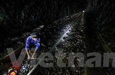 Không được giao vốn bảo trì, đường sắt lo ngại phải dừng chạy tàu