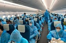 Giả mạo hàng không bán vé bay đưa công dân về nước tránh dịch COVID-19