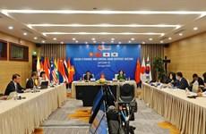 Việt Nam và Nhật Bản chủ trì Hội nghị trực tuyến AFCDM+3