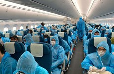 Tạm dừng cấp phép các chuyến bay từ Anh, Nam Phi về Việt Nam