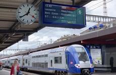 Ưu tiên 'rót vốn' làm trước 2 đoạn đường sắt tốc độ cao Bắc-Nam