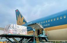 Vietnam Airlines dùng 'siêu máy bay' để chở vải thiều vào Tp.HCM