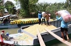 Gỡ khó cho 'luồng xanh' vận tại thủy: Cần sự phối hợp đồng bộ