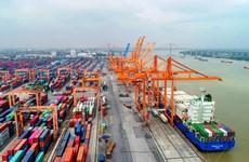 Các hãng tàu công khai giá cước, phụ thu vận tải bằng container