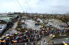 Ngư dân Philippines mất nguồn sống sau bão Haiyan