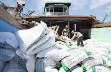 Phú Yên đề nghị hỗ trợ dân hơn 760 tấn gạo trong dịp Tết