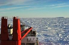 Giải cứu thành công hai tàu nghiên cứu kẹt ở Nam Cực