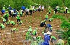 Việt Nam được đánh giá cao về ứng phó biến đổi khí hậu