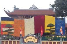 Cờ Phật giáo lớn nhất châu Á kết từ 250.000 bông hoa tươi