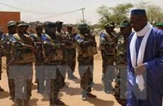 Chính phủ Mali và 3 nhóm phiến quân ký thỏa thuận ngừng bắn
