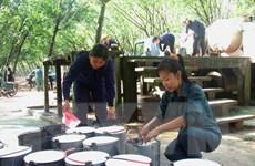 Tây Ninh: Nông dân phá bỏ gần 2.000ha cao su để trồng cây khác