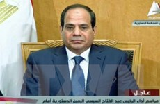 Liên minh châu Phi khôi phục tư cách thành viên cho Ai Cập