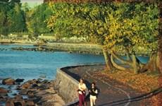 Canada: Công viên Stanley trở thành công viên đẹp nhất thế giới