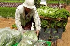 Thành phố Hồ Chí Minh: Thực phẩm tươi sống tăng giá đột biến
