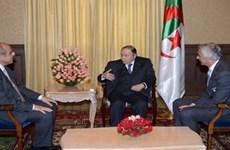 HLV Halilhodzic được mời tiếp tục dẫn dắt đội tuyển Algeria